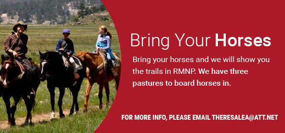 Bring Your Horses